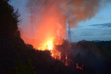 Cháy rừng thông làm mất an toàn lưới điện 220Kv